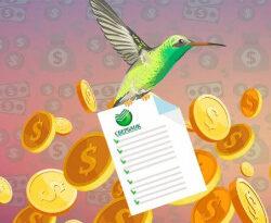 Переводы «Колибри» от Сбербанка: как получить и отправить деньги