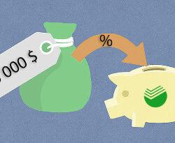 Что такое пролонгация вклада в Сбербанке и как это работает