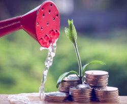 Управляемый вклад в Сбербанке: ставки и условия